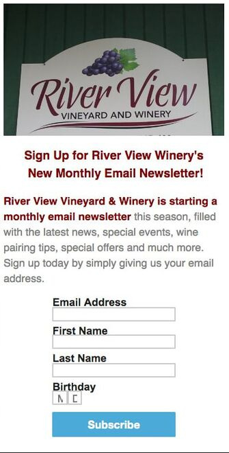 Image of newsletter sign-up form